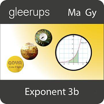 Exponent 3b, digital, elevlic, 6 mån
