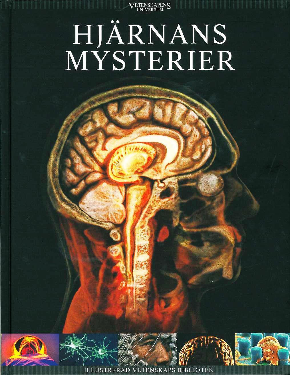 Hjärnans mysterier